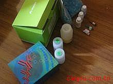 兔Elisa-可溶性血管细胞粘附分子1Elisa试剂盒,(sVCAM-1)试剂盒