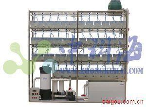 斑马鱼饲养系统(水生模式动物养殖与繁育系统)