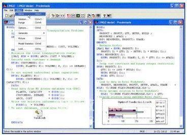 lingo13.0网络版