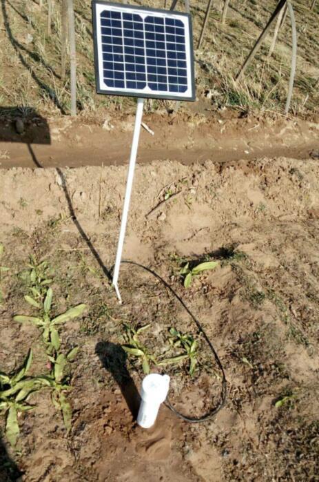 土壤水分速测仪助力草药种植