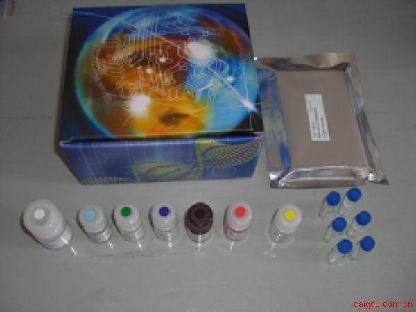 人Eotaxin-2/CCL24检测Elisa试剂盒