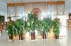 校园飘逸书香 书香浸润生命 ——新疆温宿县第二小学图书馆