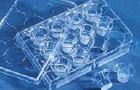 优尼康提供如何选择合适的Transwell膜和合适的孔径