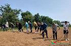 渤海大学总务处组织员工开展油菜种植义务劳动