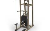 舒华品牌  力量训练器材/健身器材  SH-G5817 单双杠训练器