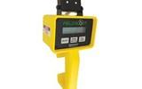 手持式NDVI测量仪 CM1000