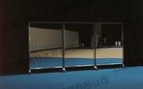 移動式舞蹈鏡(奧運會藝術體操場館案例)(北京工業大學體育館)
