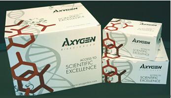 Axygen 96血基因组DNA试剂盒AP-96-BL-GDNA-4 AP-96-BL-GDNA-12