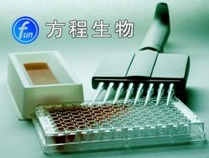 人胰岛素样生长因子-Ⅰ受体(IGF-ⅠR)ELISA试剂盒价格 北京厂家代测