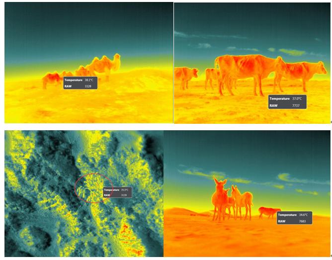 EcoDrone無人機遙感技術在草原生態畜牧業中的應用 —阿拉善專題研討會取得圓滿成功