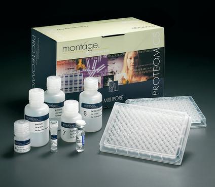 人血管活性肠肽(VIP)ELISA试剂盒