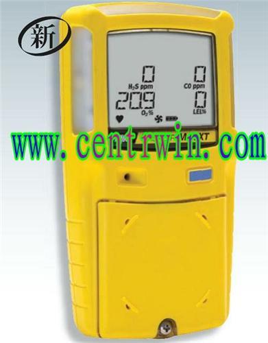 泵吸式复合气体检测仪/可燃气体检测仪/单一气体检测仪(O2) 加拿大 型号:BNX3-X000-1