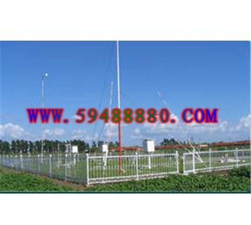自动气象站/地面气象综合有线遥测仪(大气压力 空气温度 相对湿度 风向 风速 雨量 草温/雪温 地温) 型号:DWCYZ-2