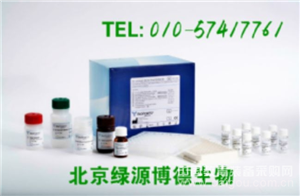 人莱姆IgG Elisa kit价格,Lyme-IgG进口试剂盒说明书