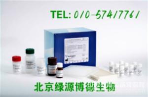 人胰蛋白酶原Ⅱ Elisa kit价格,Try-Ⅱ进口试剂盒说明书