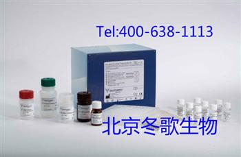 Human芳香烃受体,人(AhR)elisa试剂盒