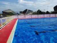 卧龙牌全钢机构拆装式游泳池